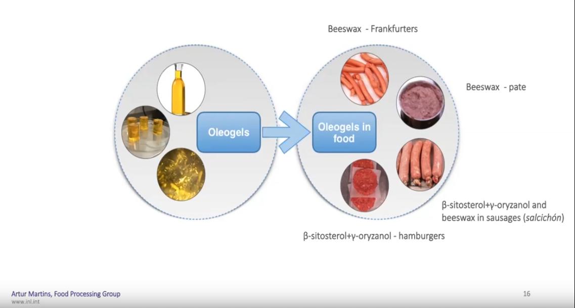 FODIAC webinar series 3.0: Healthy Fats and OleoGels